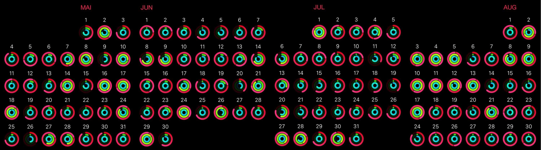 Analyse von Aktivitätsdaten der Apple Watch